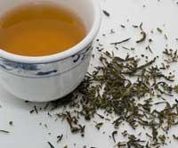 Burn fat with green tea