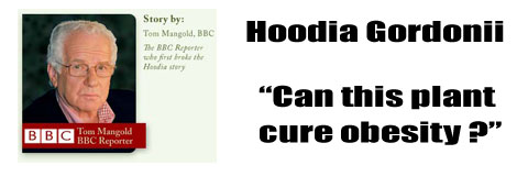 hoodia-cure-for-obesity
